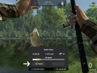 Fishing Planet ps4 demo