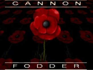 cannon fodder msdos pc game