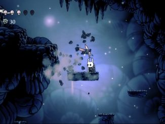 Hollow Knight: Voidheart Edition PS4
